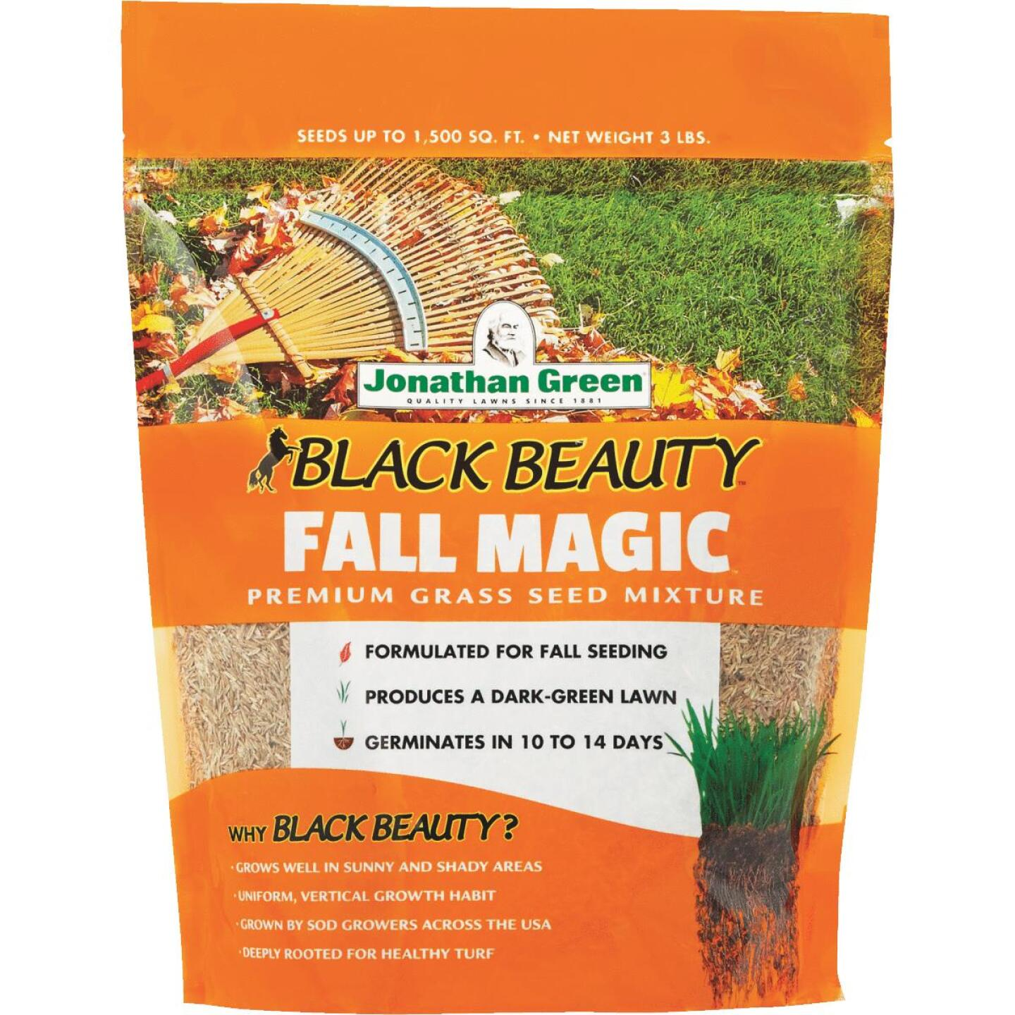 Jonathan Green Black Beauty 7 Lb. 1750 Sq. Ft. Coverage Sun & Shade Grass Seed Image 1