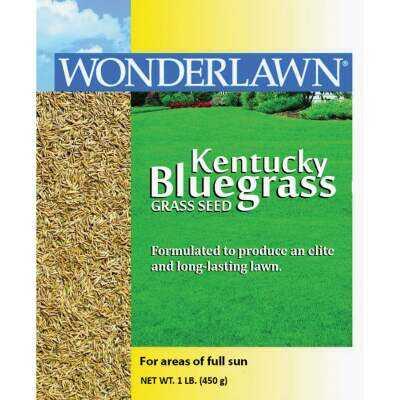 Wonderlawn 1 Lb. 500 Sq. Ft. Coverage Kentucky Bluegrass Grass Seed